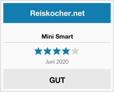 Mini Smart Test